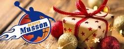 Basket Christmas Stage
